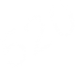 Ladegerät Start 520