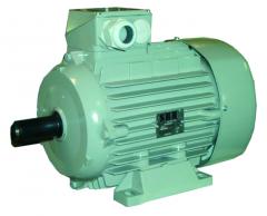 Drehstrommotor 0,55 KW/3000U/m