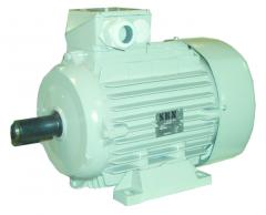 Drehstrommotor 0,75 KW / 1420 U/min.
